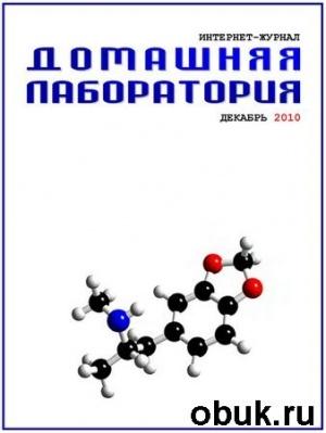 Журнал Домашняя лаборатория №12 (декабрь 2010)