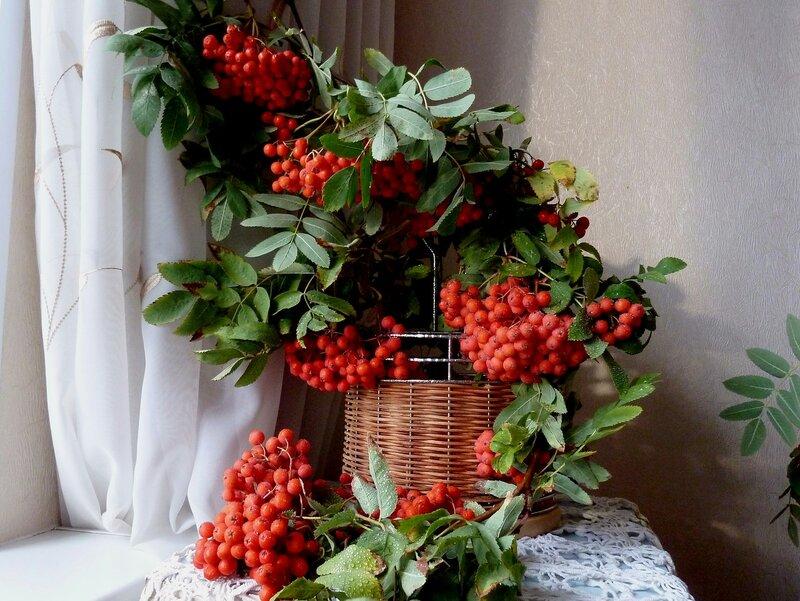 Осенние краски, осенние дни...Вновь гроздья рябины горят как огни...