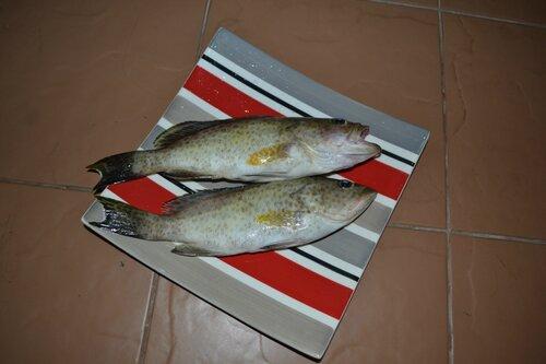 Как приготовить рыбу. Тайские рецепты.