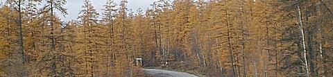 Хандыга - осень