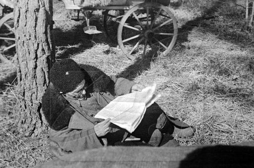 Ковпак читает газеты.jpg