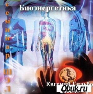 Аудиокнига Биоэнергетика. Семинар ШЭЛ. (Евгений Гильбо) 2006 г.