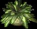 R11 - Garden PotPlant 2014 - 199.png