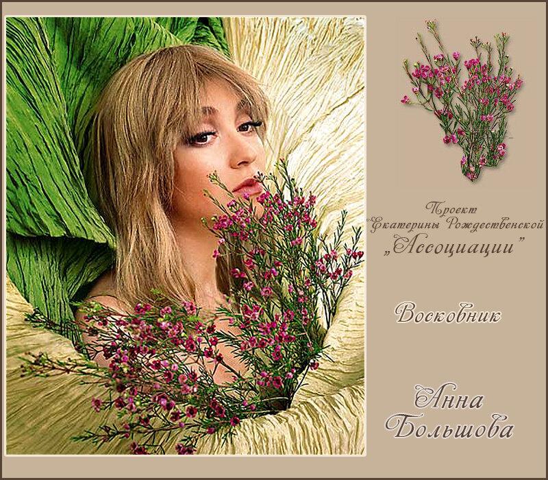 http://img-fotki.yandex.ru/get/3008/121447594.4d/0_7497a_507049f7_XL.jpg