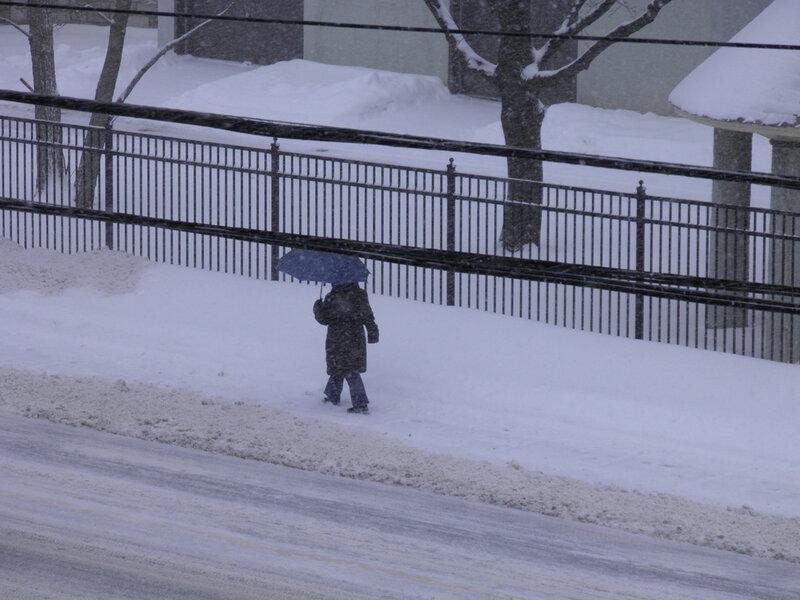 16 Декабря 2010 года. Вид из окна. Идёт мокрый снег.