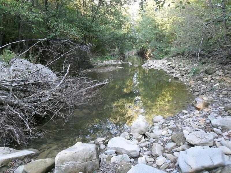Окрестности Горячего Ключа, лес, туризм, 8 октября 2011