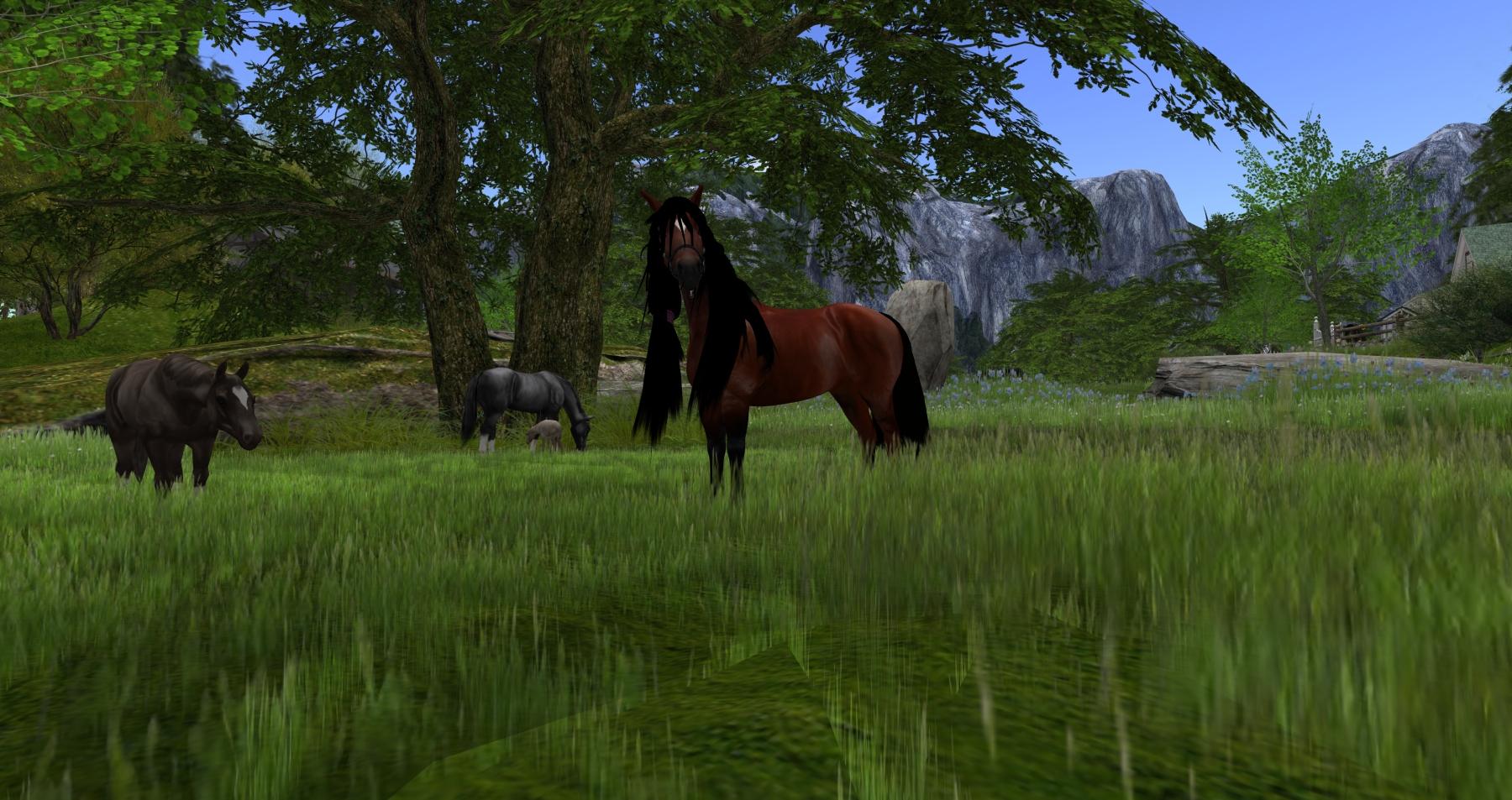 horseavatar2