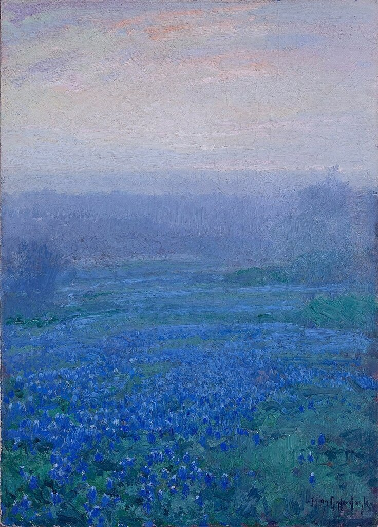 Bluebonnets at Sunrise.jpeg