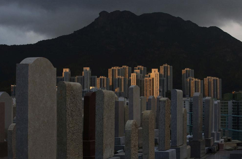 13. Выше облаков. Башня 2 Международного финансового центра является вторым по высоте зданием в Гонк