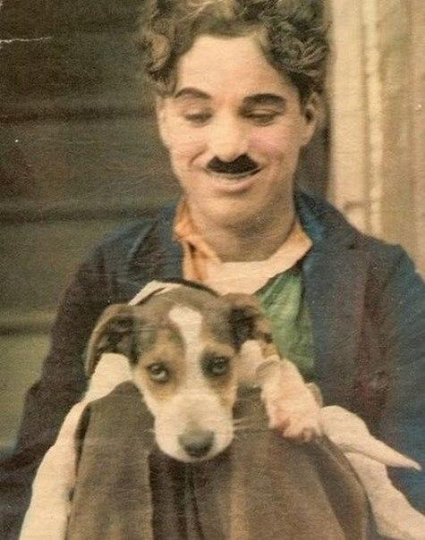 Чаплин, который получил за свою карьеру три «Оскара», по-прежнему считается одним из самых вели