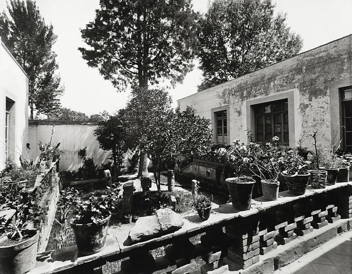 11. Внутренний двор ее дома Casa Azul.