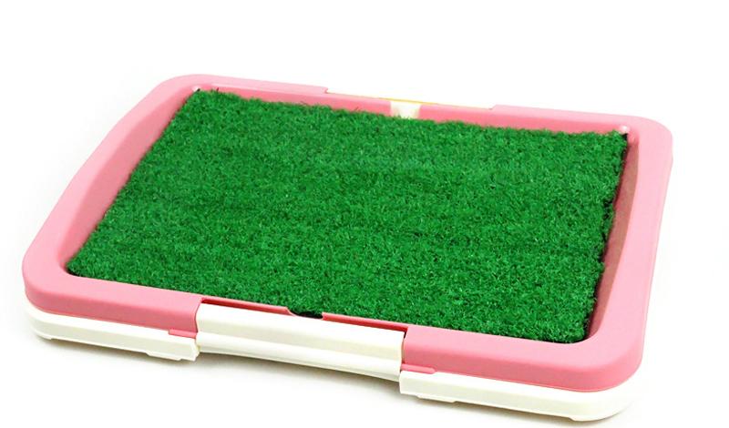 8. Домашний газон Если ваш кот домашний и не выходит погулять на улицу, то сделайте для него дома на