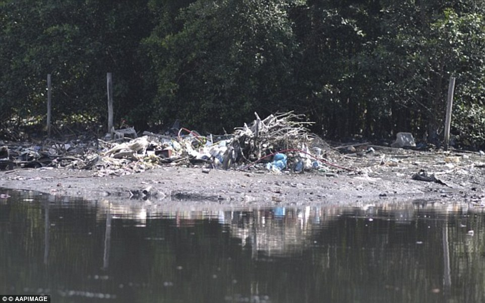 36A688B700000578-3711766-Piles_of_rubbish_align_the_shores_of_the_bay_as_worries_increase-m-34_1469670329509.jpg