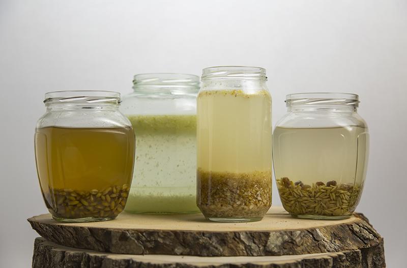 probiotic-drinks-anastasiya-zhitenskaya