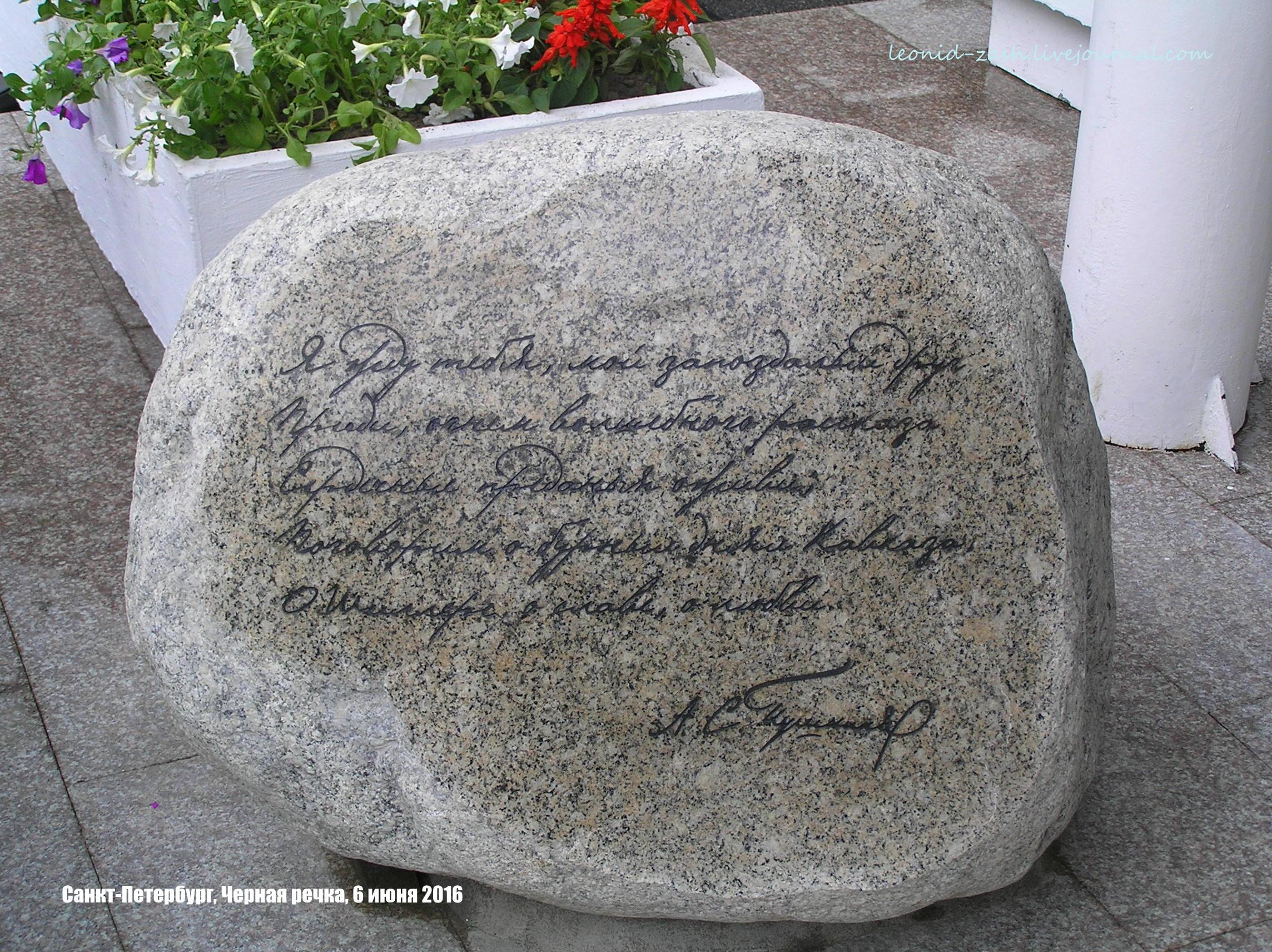 Пушкин 134.JPG