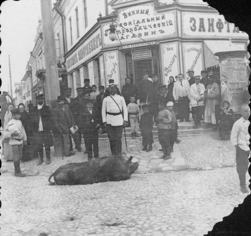Киевская улица. Застреленная свинья на Пьяном углу