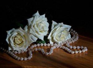 розы и жемчуг.jpg