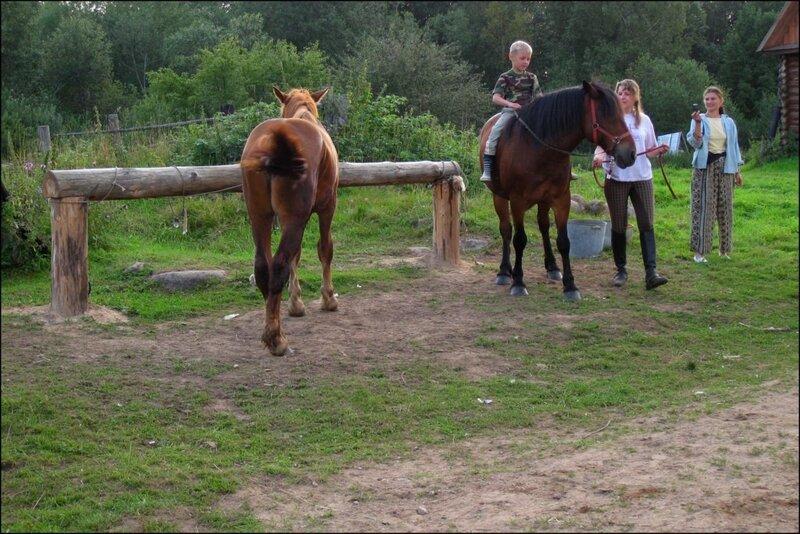 В Балуево я помогала с лошадьми