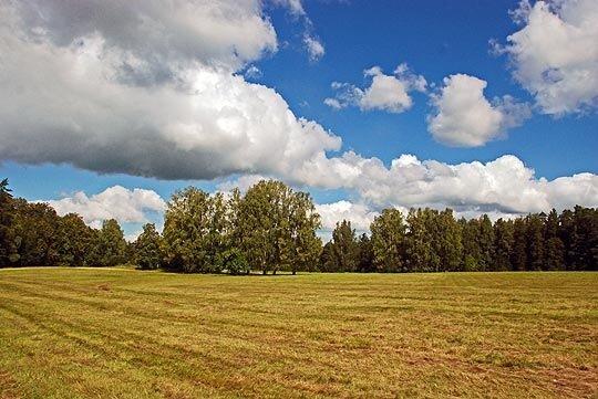 Типично русский пейзаж... 1