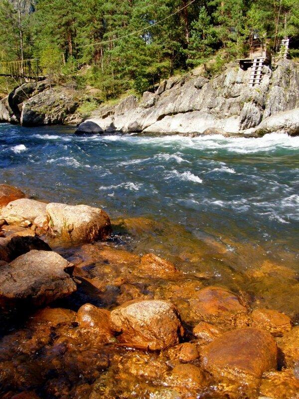 Река Чемал после Чемальской ГЭС
