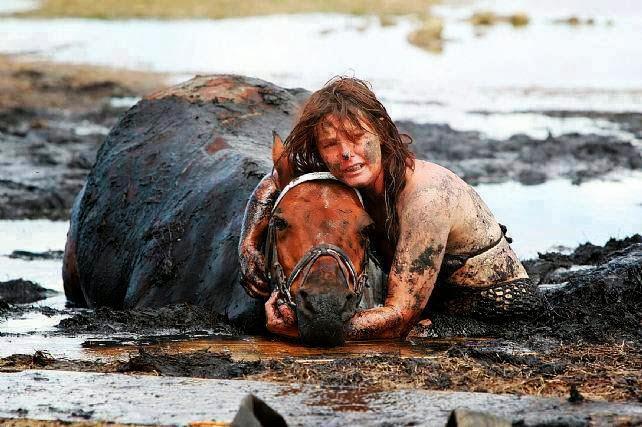 Как люди спасают животных 0 12cfe3 af9b765b orig
