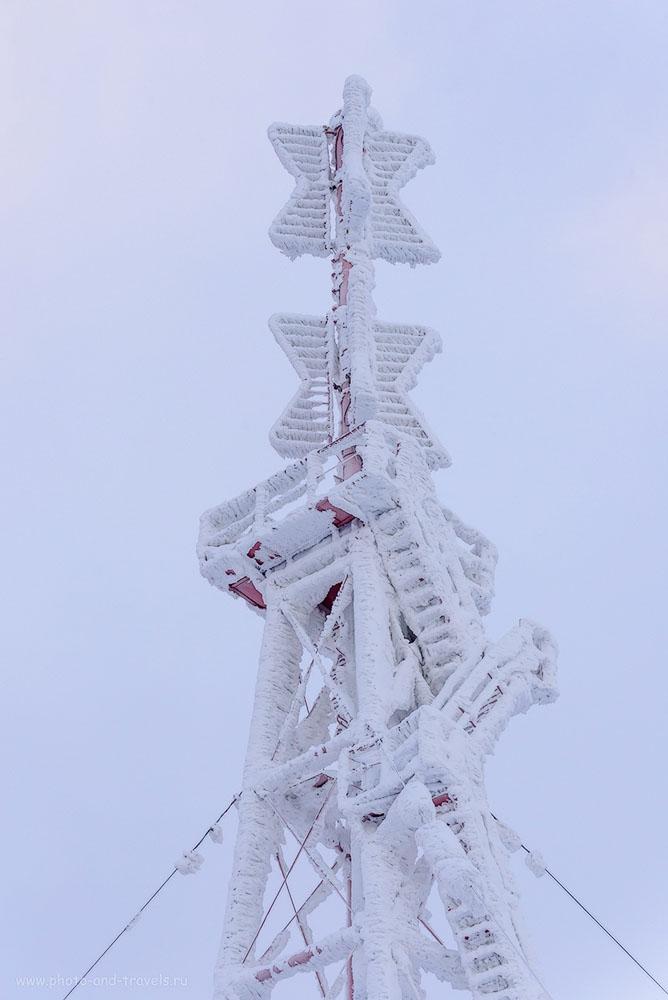 Фотография 6. Зефир на вышке метеорологической станции Полюдова камня. 1/80, 0.67, 8.0, 500, 24.