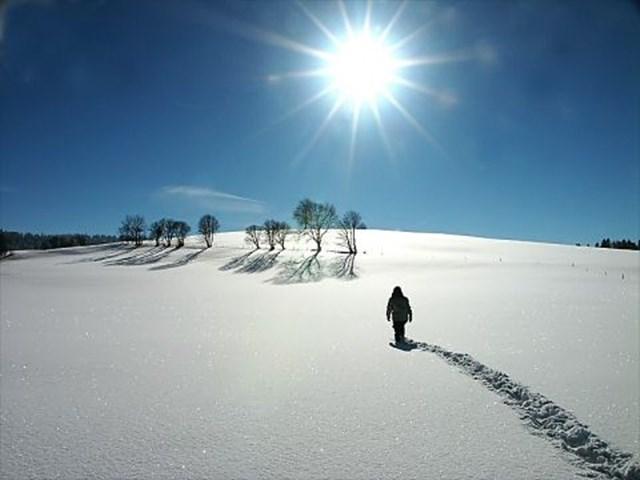 100 самых красивых зимних фотографии: пейзажи, звери и вообще 0 10f593 b4eda70 orig