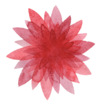 3_Floral (104).png