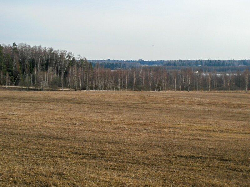 Поле около Рождествено-Суворово