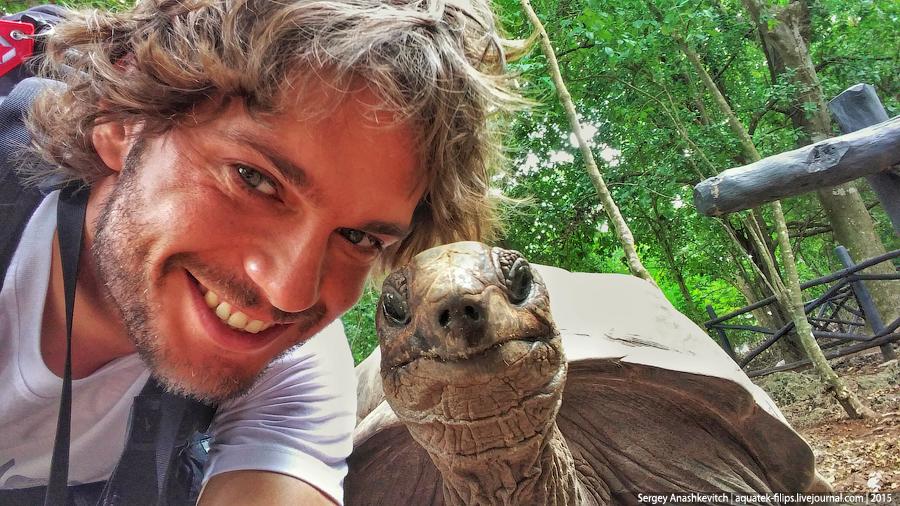 Селфи с черепахой