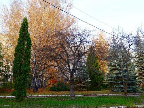 Тихо и спокойно в осеннем парке...