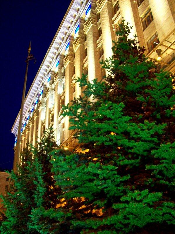 Ели под киевской мэрией