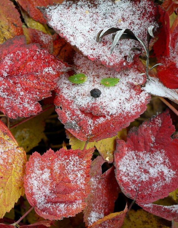 осень с настроением