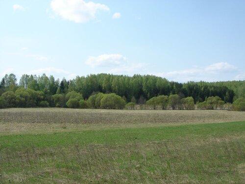 'Белоруссия
