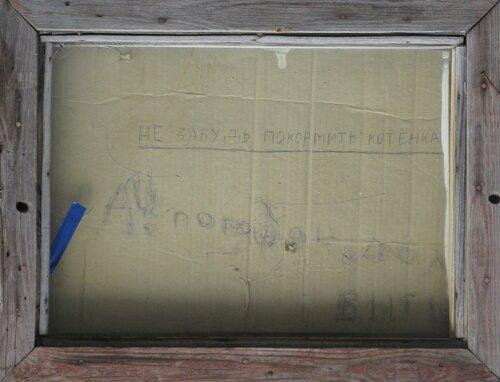 уличные таблички про котят - курган, заозерный