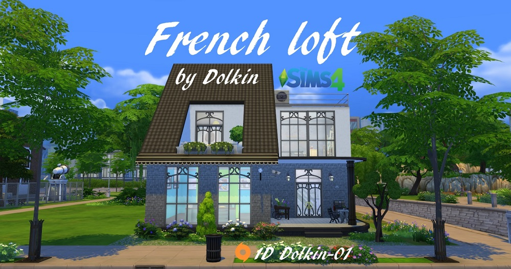French loft by Dolkin
