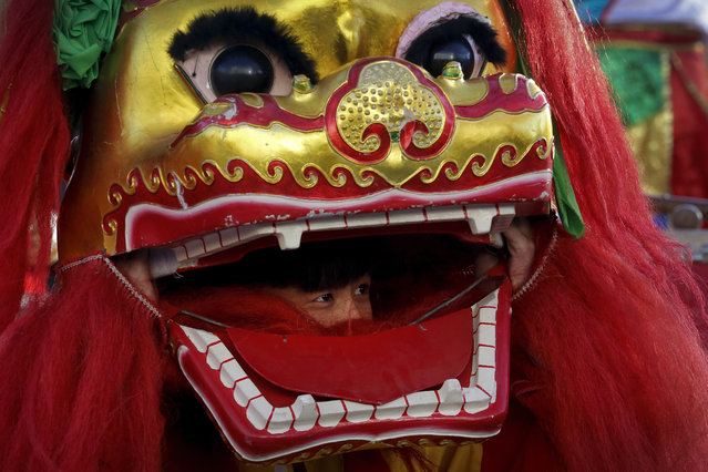 A lion dance performer looks out from the mouth of the lion head at Ditan Park to mark the first day