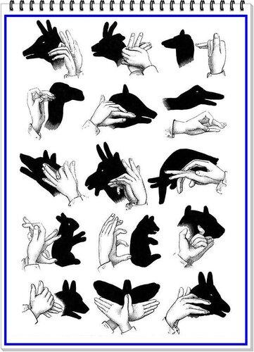 6 Домашний театр теней - создаем руками силуэты животных..jpg