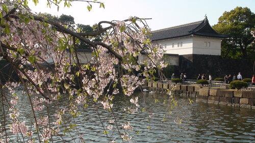 апрель Токио