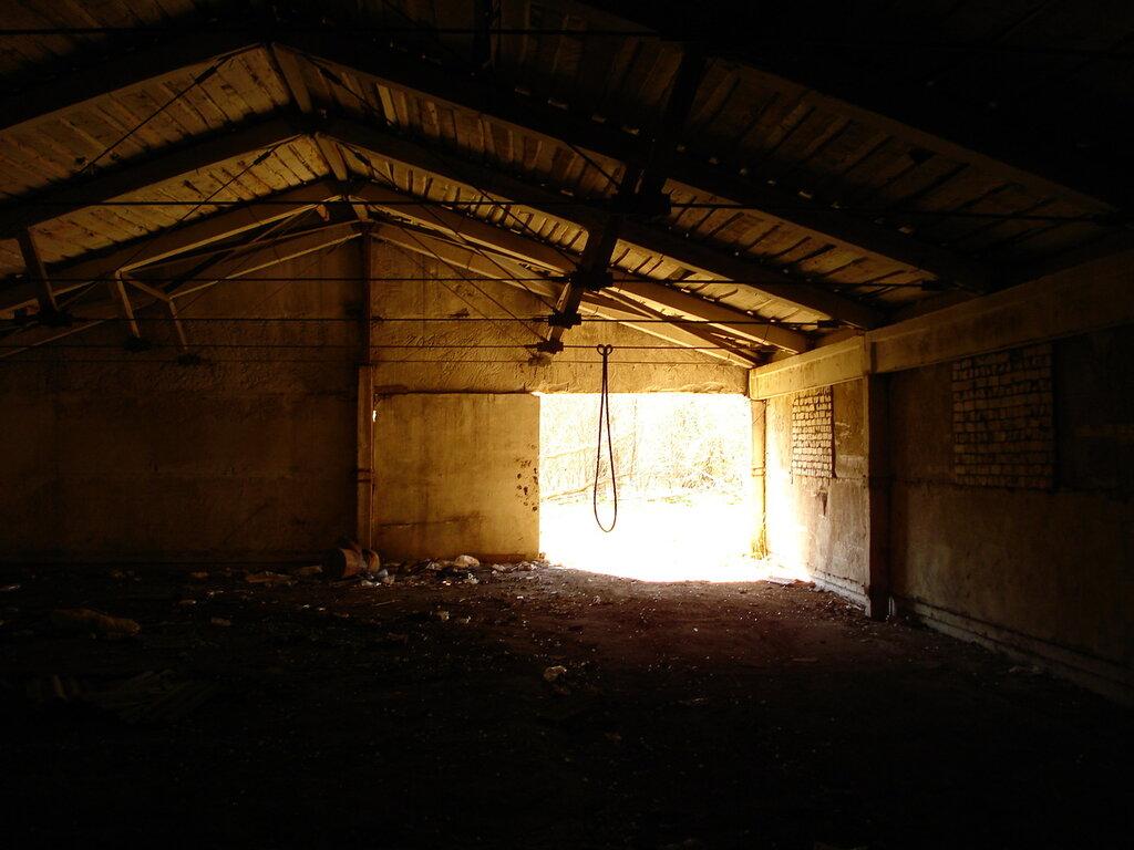 Странный выход на свет в конце тунеля