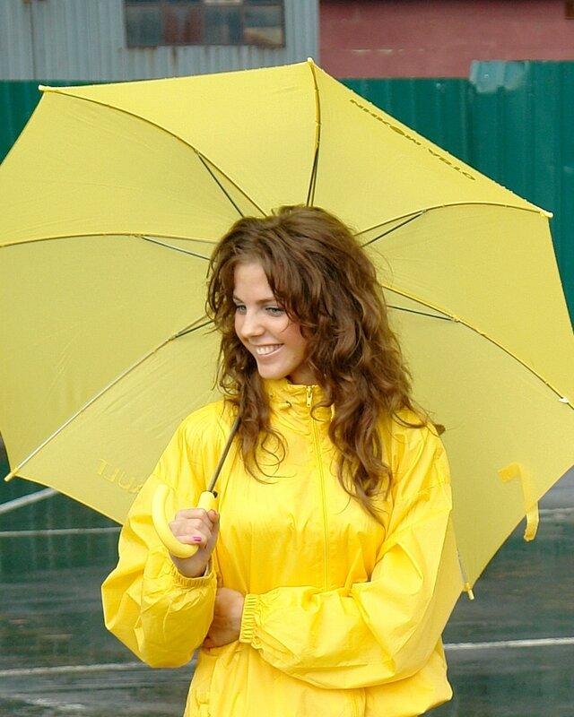 Шербурский зонтик