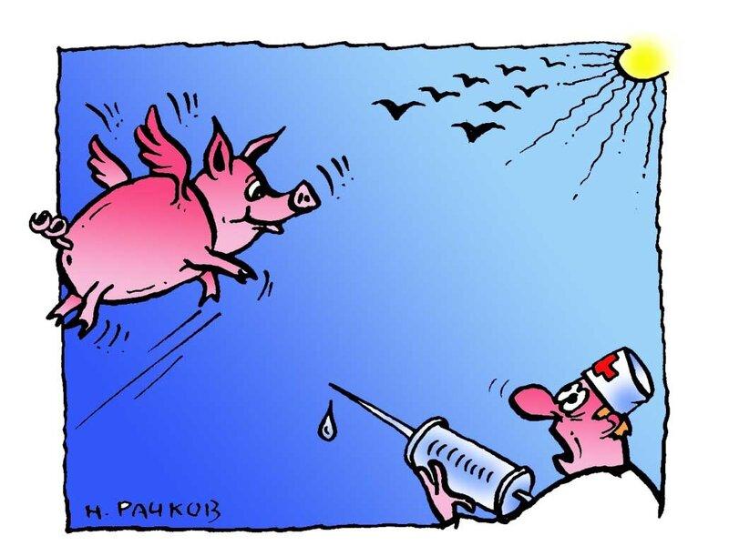 свиной грипп-3