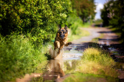 Пятничное! Позитивное! :-))я бегу по лужам, мне никто не нужен!!!