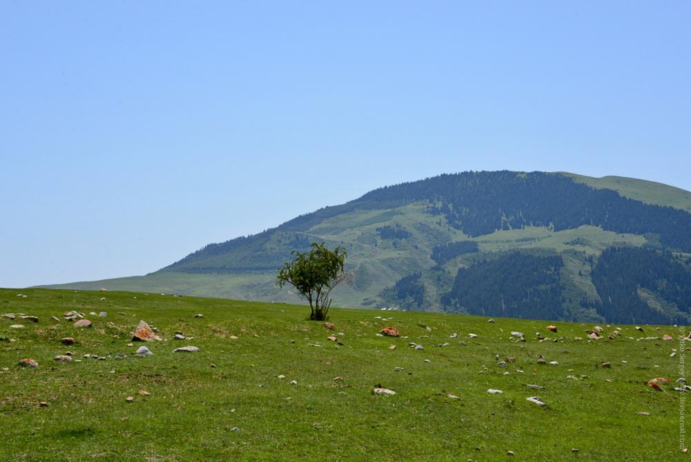Семеновское ущелье