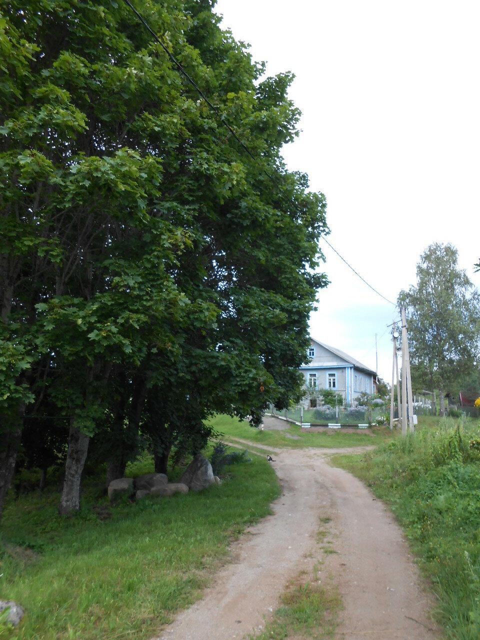 В деревне Байнёво
