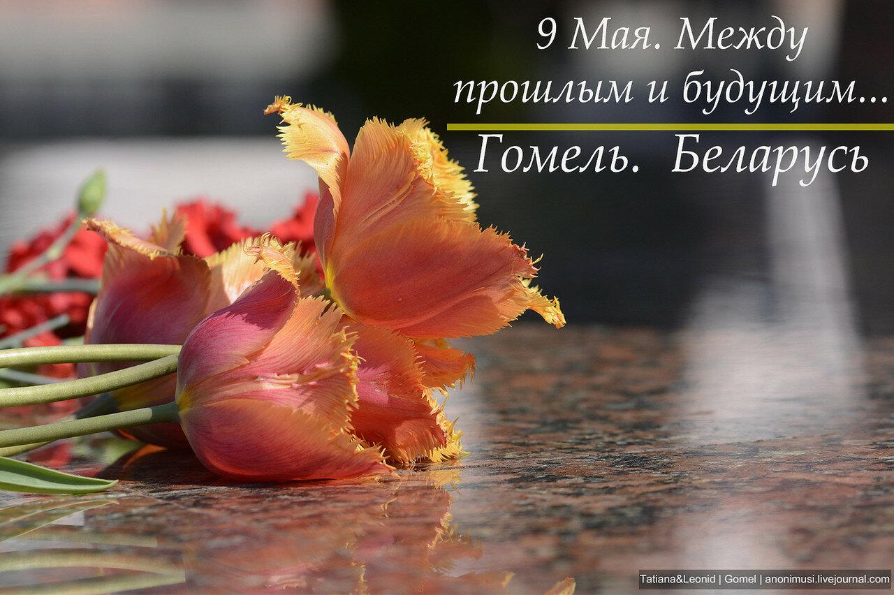 9 Мая в Гомеле. Беларусь