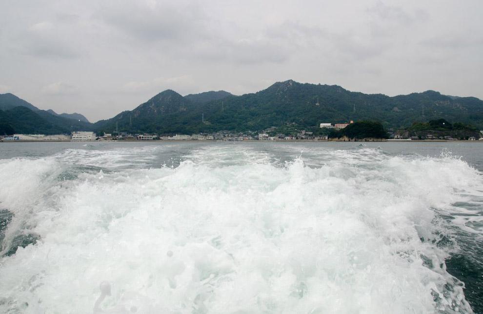 4. От причала видна самая высокая часть острова, рядом с вышкой. Я потом туда заберусь.