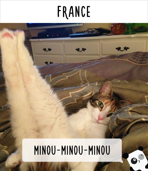 Франция — мину-мину-мину.