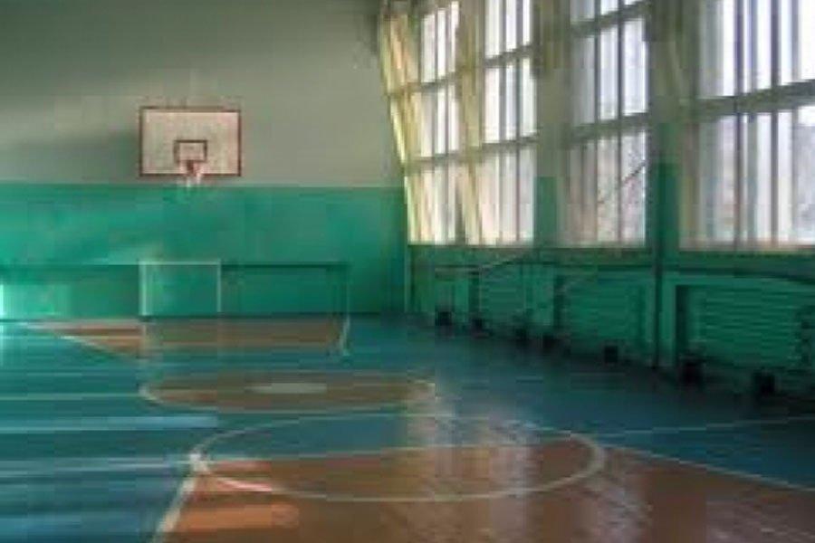 Под Москвой школьник впроцессе урока физкультуры потерял сознание и скончался
