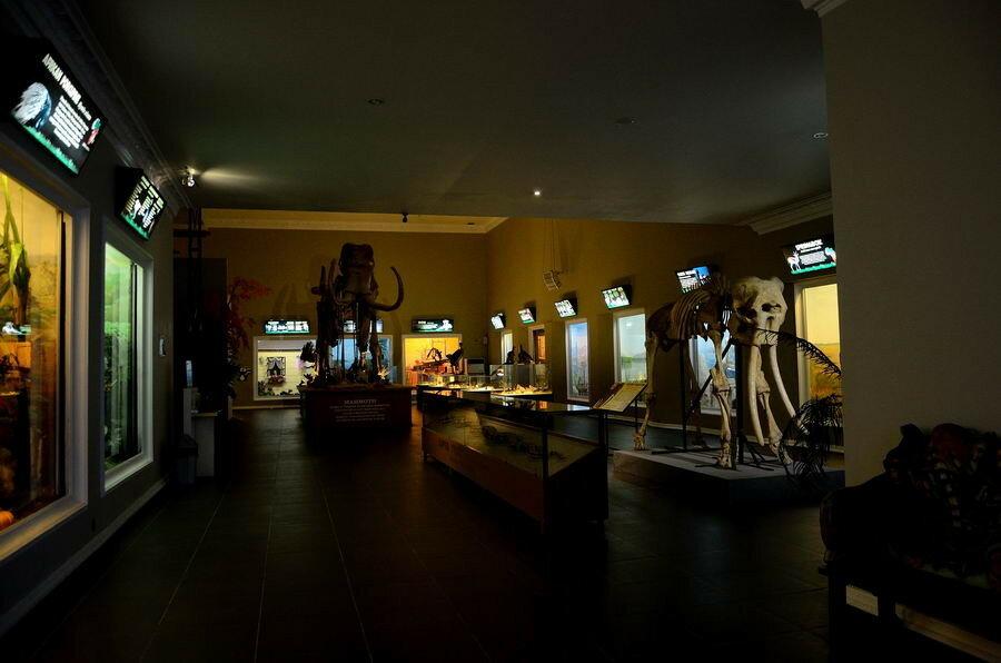 Общий вид на экспозиции музея